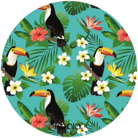 Disco Salvagoccia - Toucans